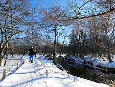 snow_okunikko.jpg