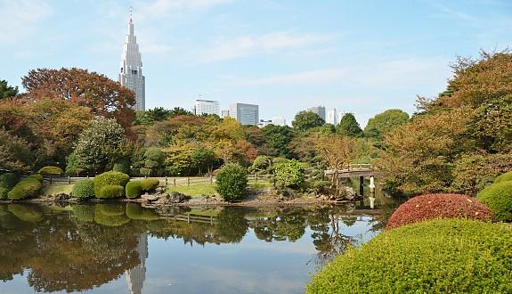 sakura shinjuku