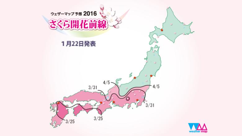 sakura_front_800x450