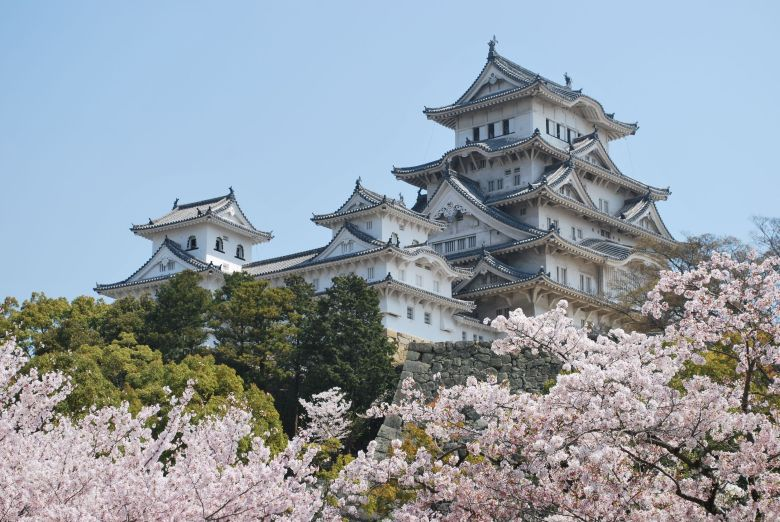 himeji-castle-and-cherry-blossoms1
