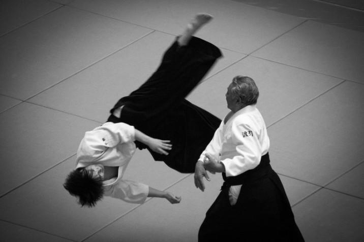 seni bela diri Jepang aikido