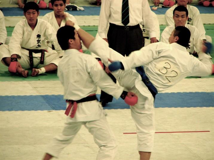 seni bela diri Jepang karate