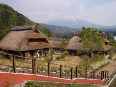 tour jepang agustus