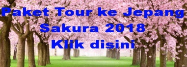 paket tour ke jepang sakura