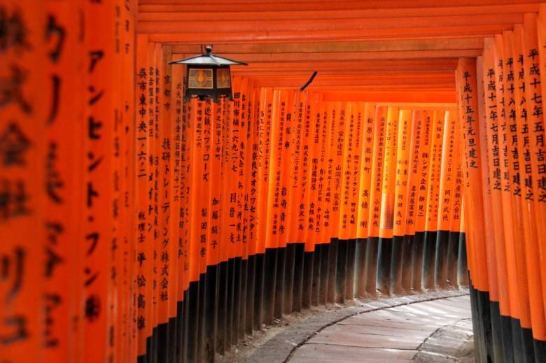 tour ke jepang fushimi inari