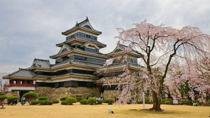 private tour ke shirakawago jepang tour jepang shirakawago wisata ke istana matsumoto castle