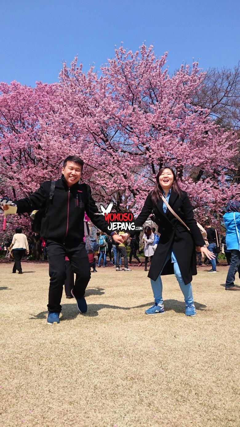 tour ke jepang sakura honeymoon ke jepang 3