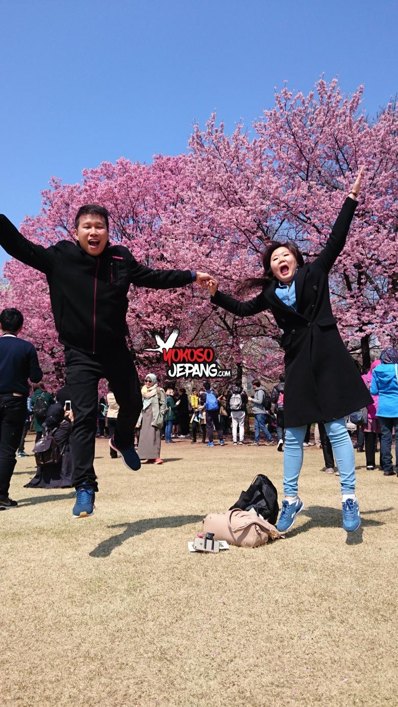 tour ke jepang sakura honeymoon ke jepang 5