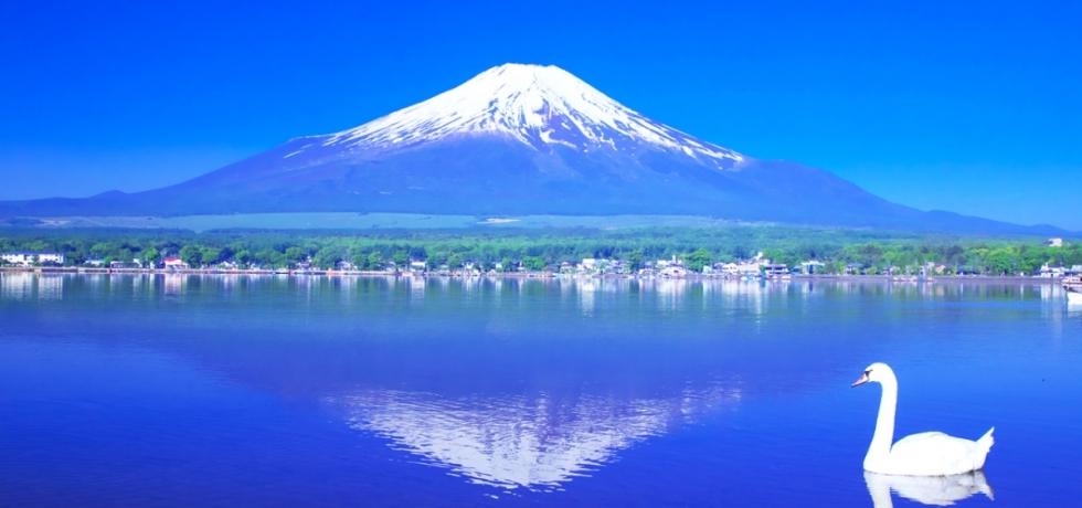 Paket Wisata Jepang Mei Edisi Tour Jepang Lebaran 2020