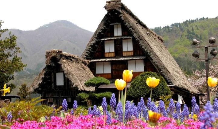 paket tour jepang shirakawago